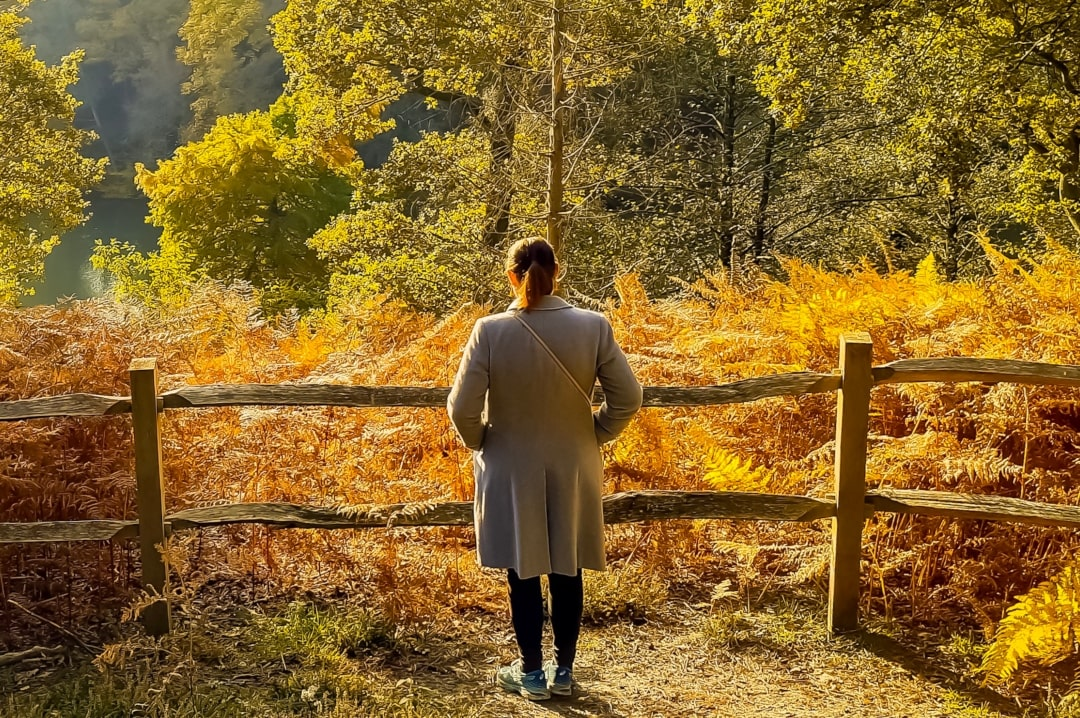 A photograph of a woman overlooking an autumnal forest and lake - The Night That I Will Never Forget - a post about life after attempted Suicide - Mrs H's favourite things