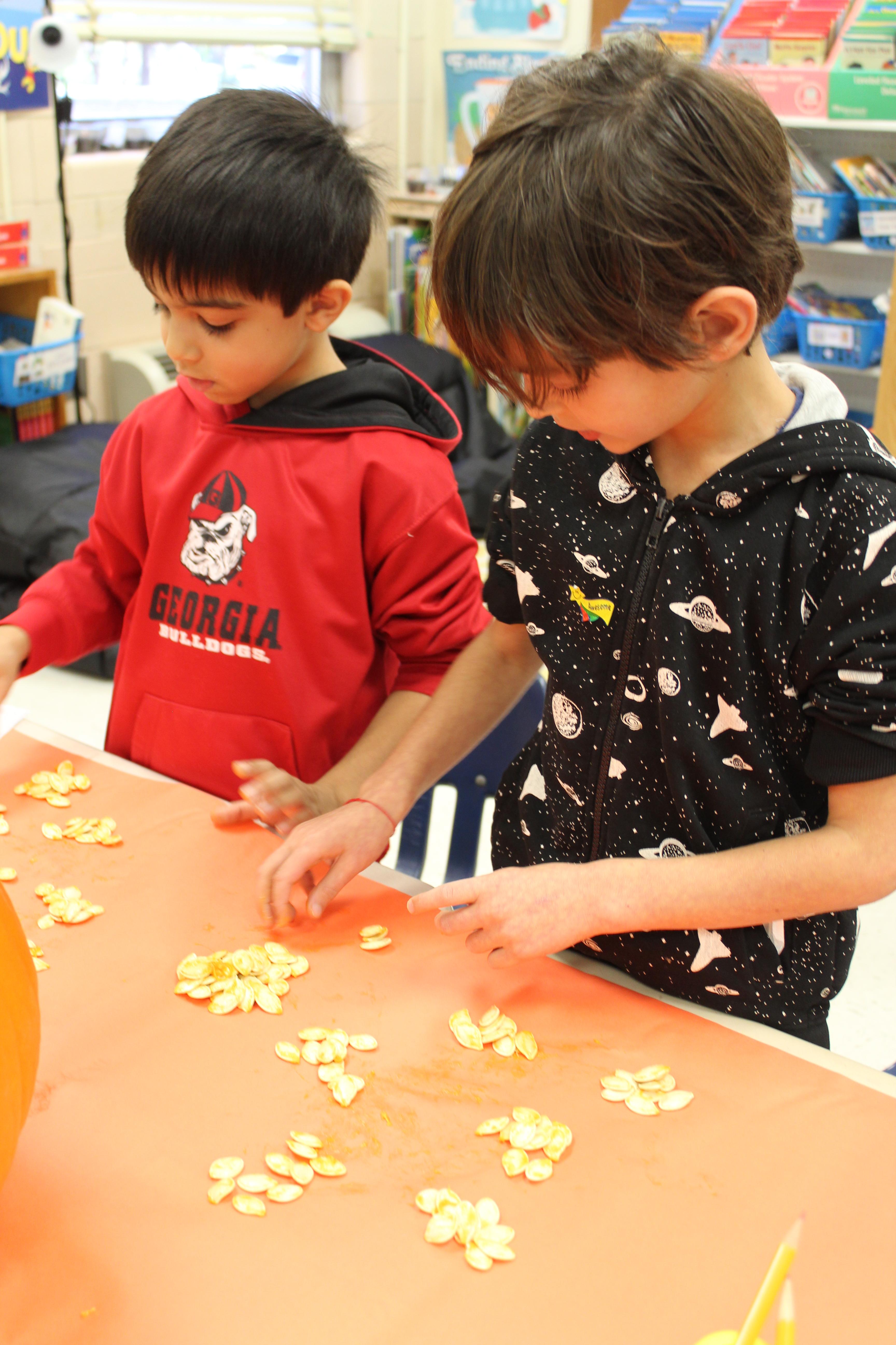 Pumpkin Math Photos