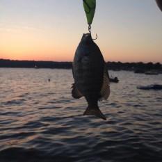 Fishing at sunset on Lake Geneva.