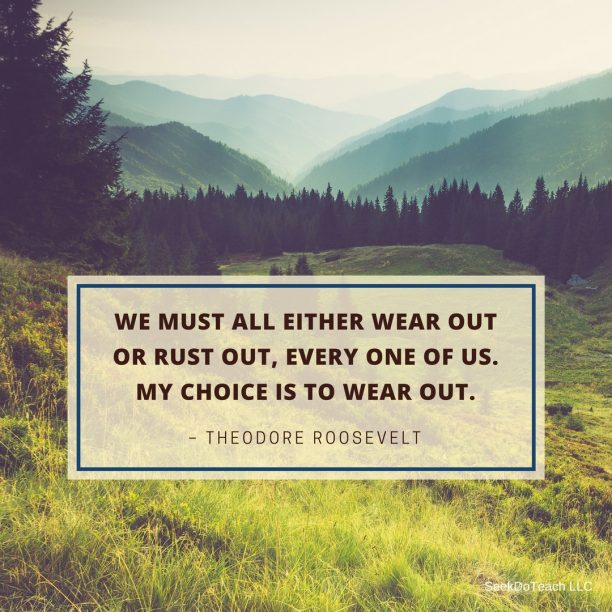 We must all either wear out or rust out, every one of us. My choice is to wear out. – Theodore Roosevelt