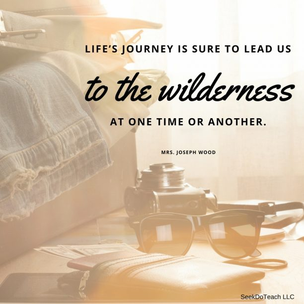 Life's journey is sure to lead us to the wilderness at one time or another.