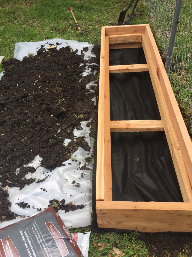 Raised bed garden before dirt is added