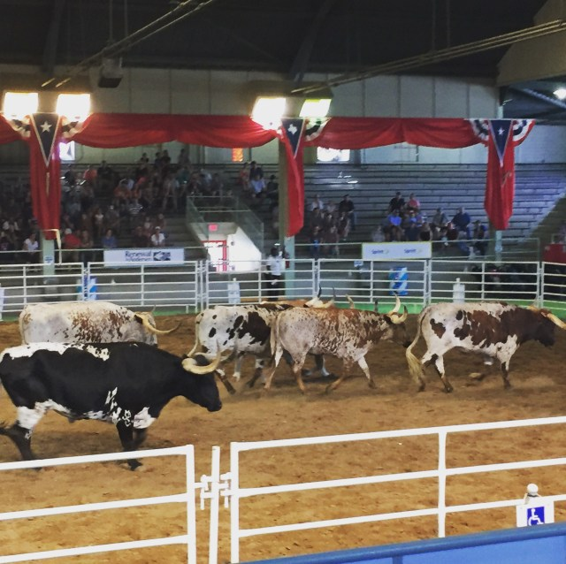 The Lone Star Stampede at the State Fair of Texas