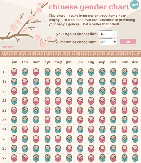 Updated pregnancy timeline (2/2)