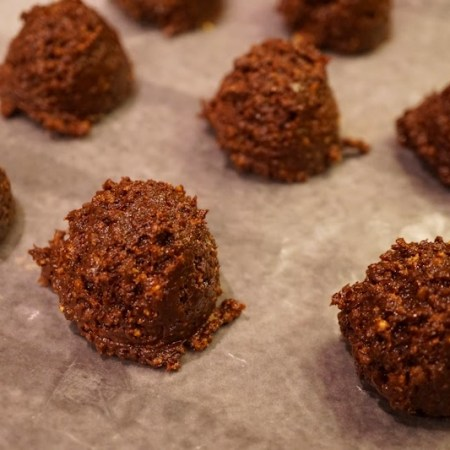 Chocolate Crunch Bites
