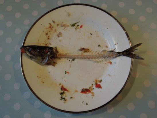 Image of bare fish bones
