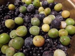Image of hedgerow fruit