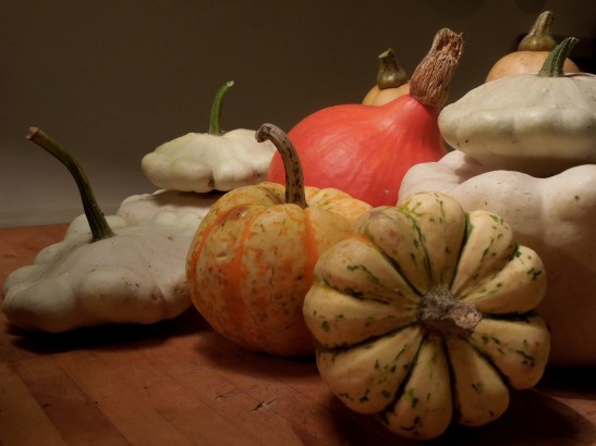 Image of a group of pumpkins