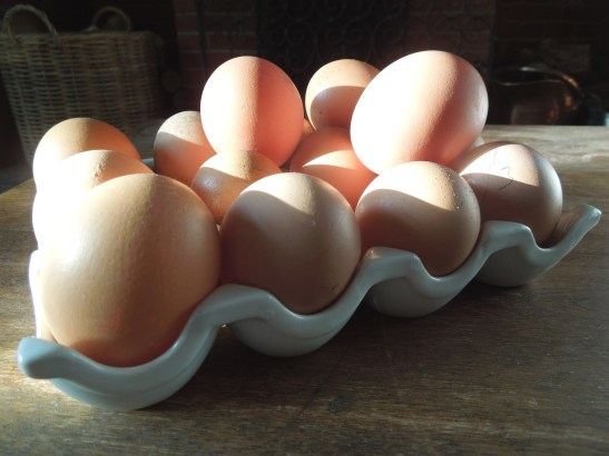 Image of a tray of eggs