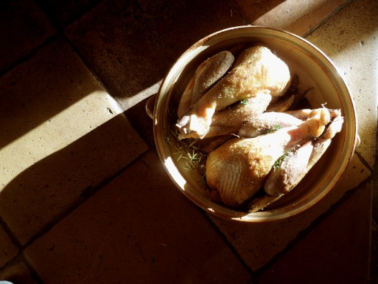 Image of browned guinea fowl in casserole