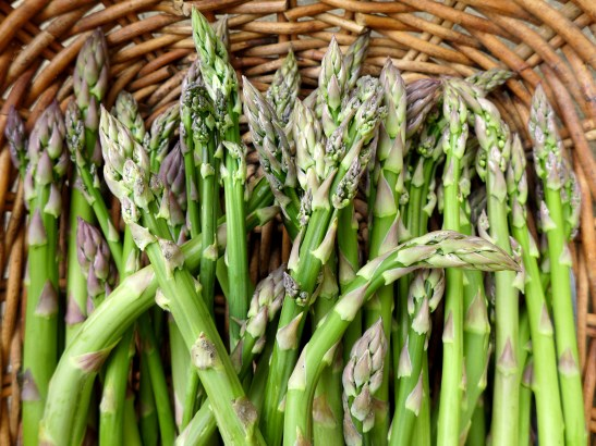 Image of freshly-picked asparagus