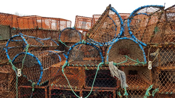 Image of crab and lobster pots