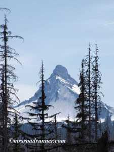 Mt Washington Oregon