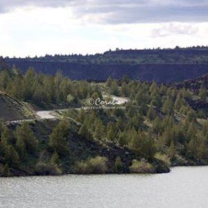 central oregon landscape 2156 Web Download