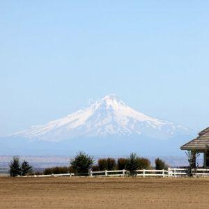 Central Oregon Vista Mt. Hood 325