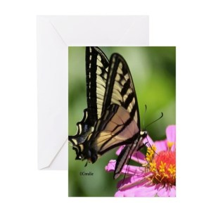 Colorful Yellow Swallowtail Butterfly Greeting Cards