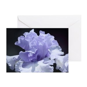 blue tall bearded iris Greeting Cards