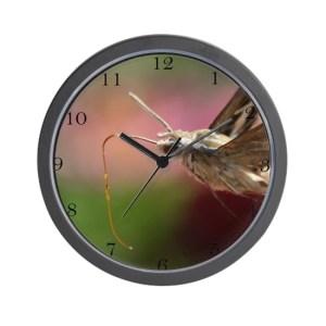 Sphinx Hawk Hummingbird Moth Large Wall Clock