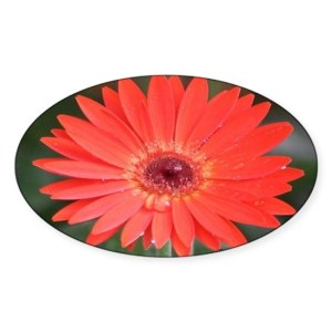 Colorful Red Chrysanthemum Flower 2 Decal Sticker Oval
