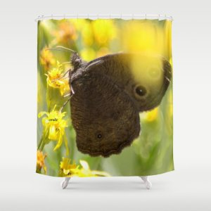 Colorful Common Wood-nymph Butterfly Shower Curtain
