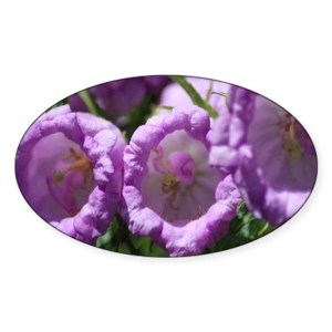 Colors of The Bell Flowers Decal Sticker Oval