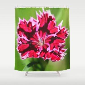 Flashy Dianthus Flower Shower Curtain