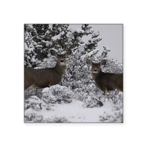 Mule Deer Sticker 3″ x 3″