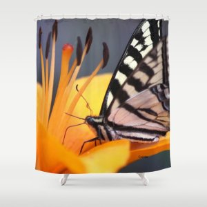 Swallowtail Butterfly On A Lily Flower Shower Curtain
