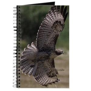 Wing Spread In Flight Journal