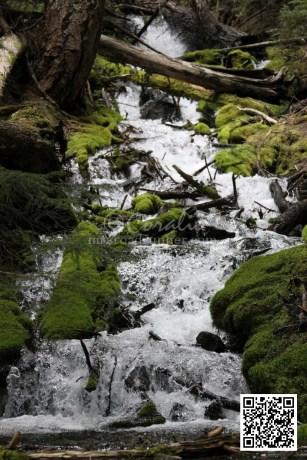 cascades 905