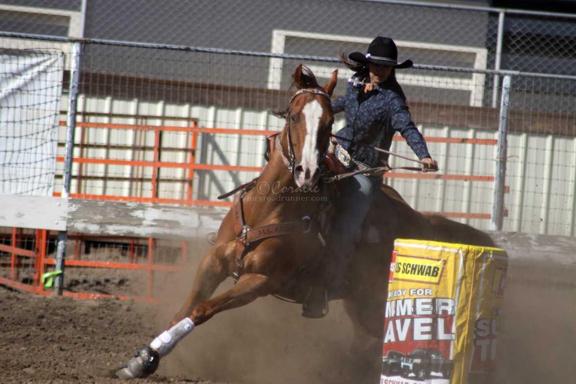 barrel racing rodeo 1622