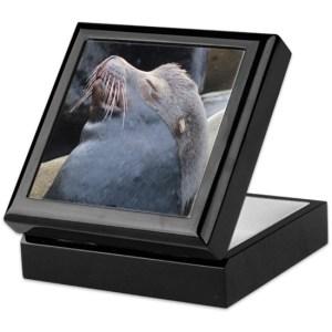 Oregon Sea Lion Jewelry Boxes
