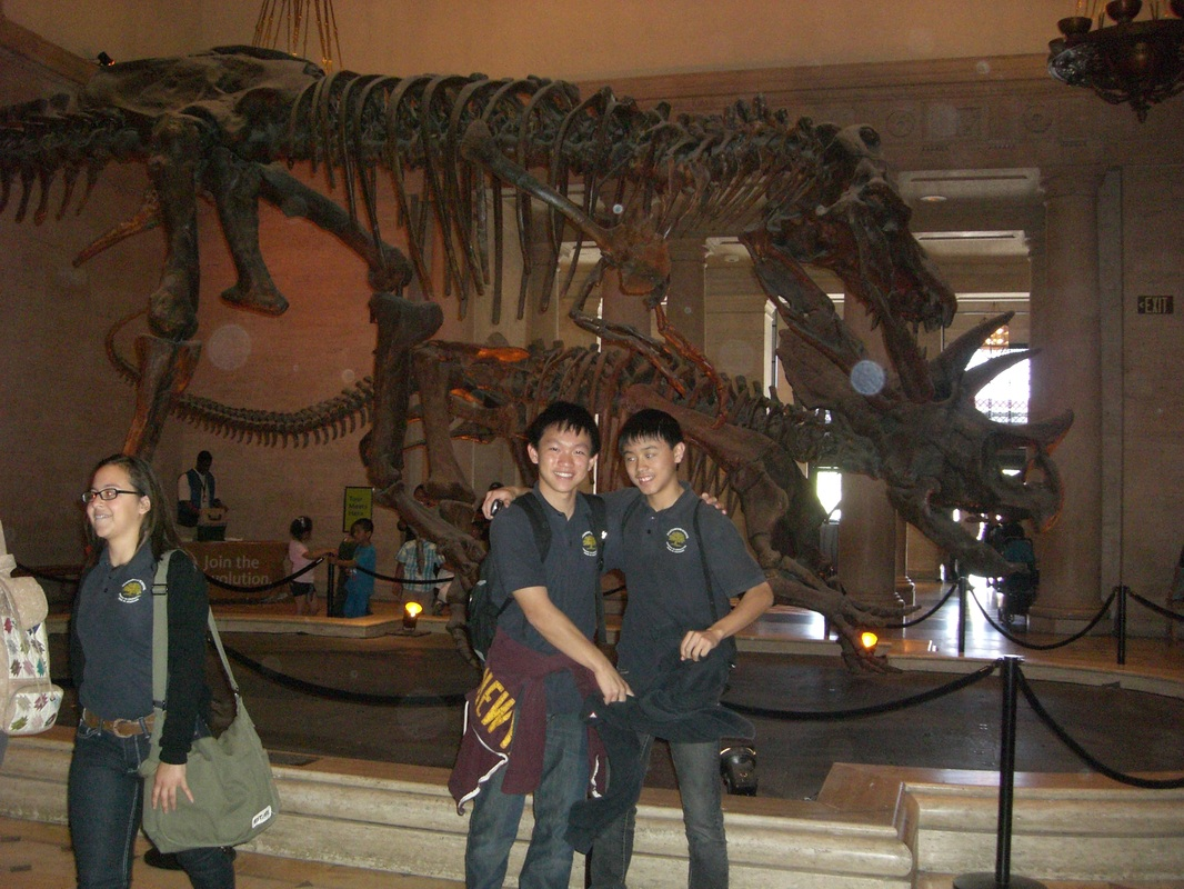 Field Trip To Natural History Museum