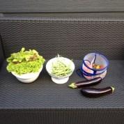 sla, aubergine, boontje en tomaat vers uit de tuin geoogst