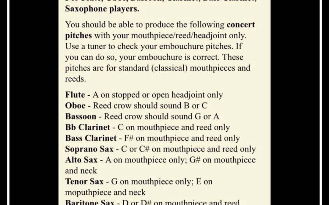 Woodwind Instrument Embouchure