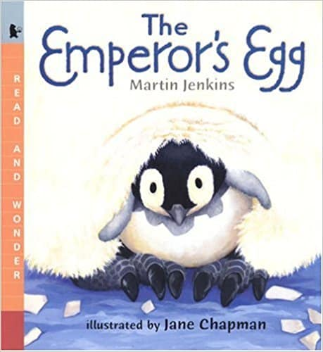 Penguin learning in kindergarten is a blast! Check out our week of reading and learning about penguins.