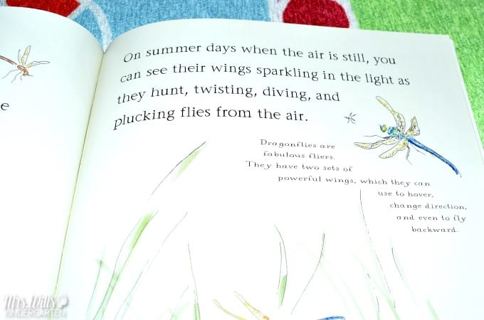 Insect Lesson Plans for Kindergarten. Students dive deep into learning about insects with these close reading and writing response activities. A week's worth of activities and more!