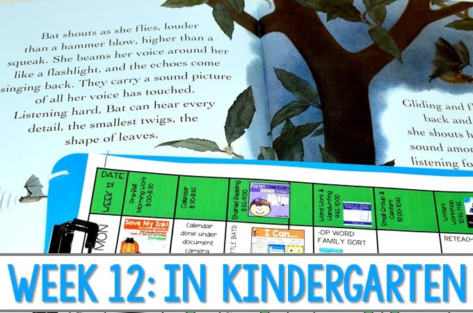 Kindergarten Lesson Plans Week 12 Bat Loves the Night. Ideas for reading, writing, math, craft and center activities too. Download the free editable lesson plan template,