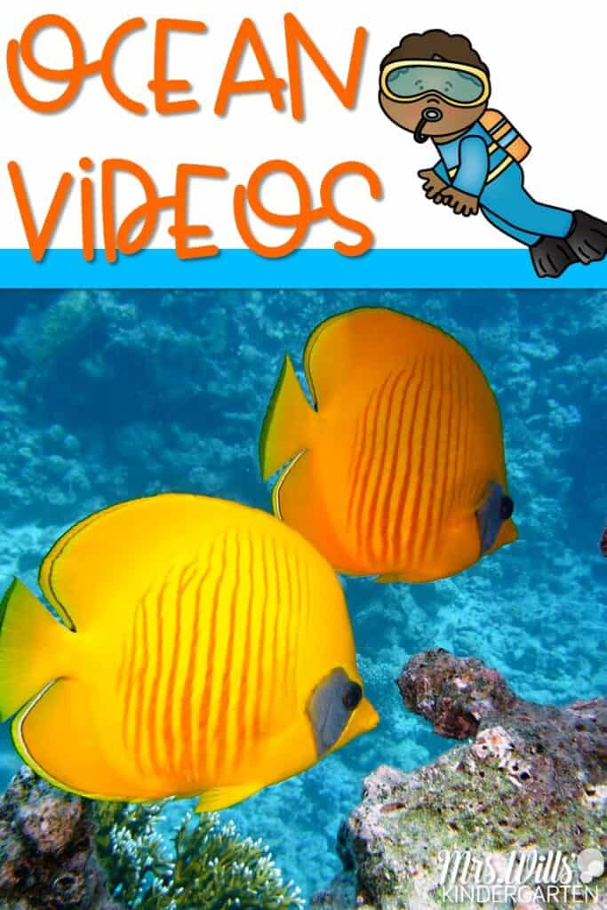 Ocean videos for kids that are perfect for your study of the ocean in kindergarten and first grade. Learn about the five different oceans, coral reefs, and ocean animals with these teacher-approved videos. #oceanvideosforkids #learningabouttheocean