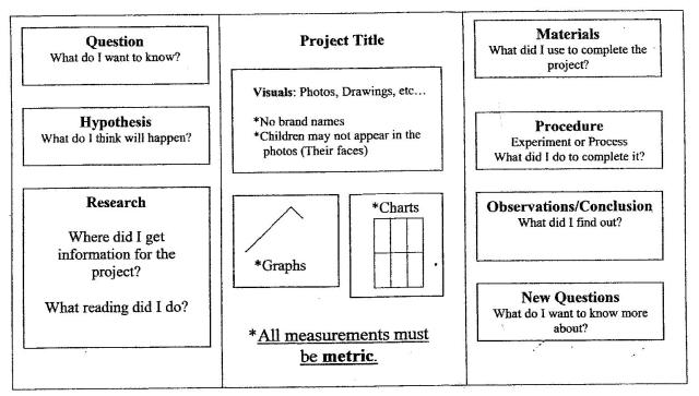 Science Fair Project Display Board Layout