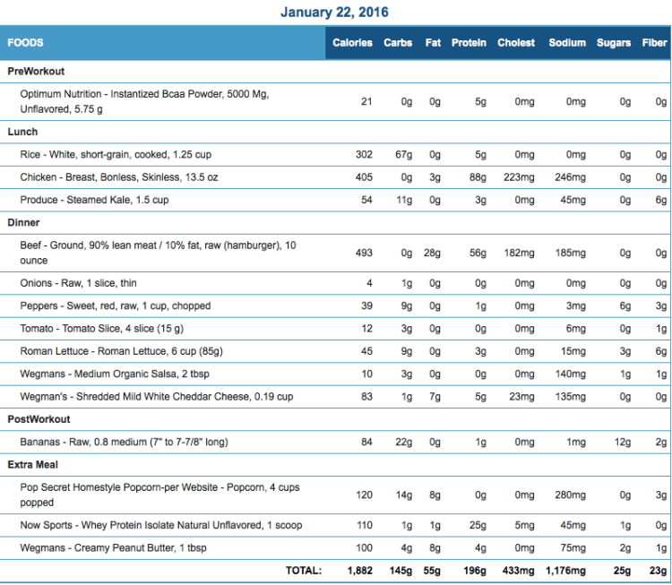 Mike's Diet Journal Entry for January 22 2016
