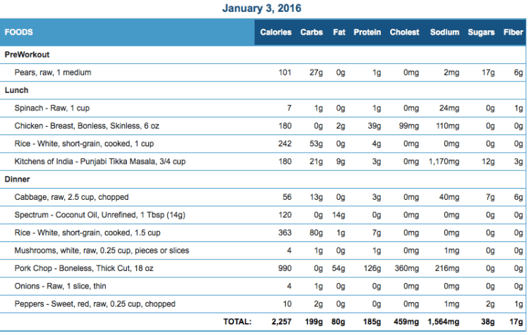Mike's Diet Journal Entry for January 3 2016