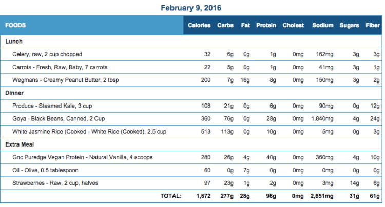 Mike's Diet Journal Entry for Feb 9 2016