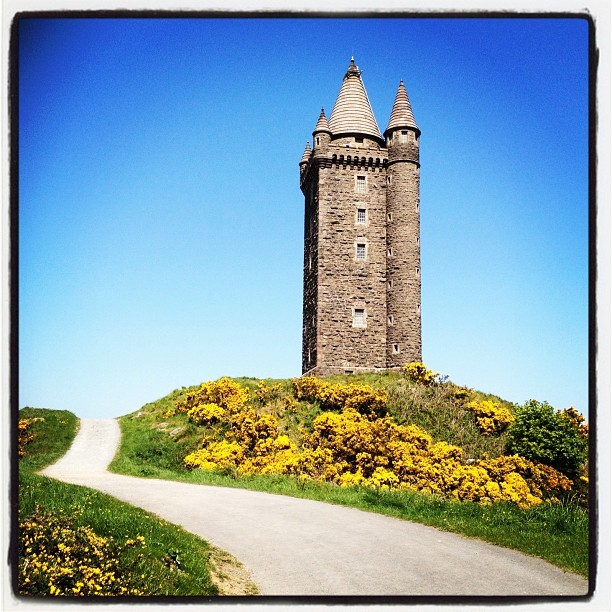 20120527 Trail to Scrabo Tower