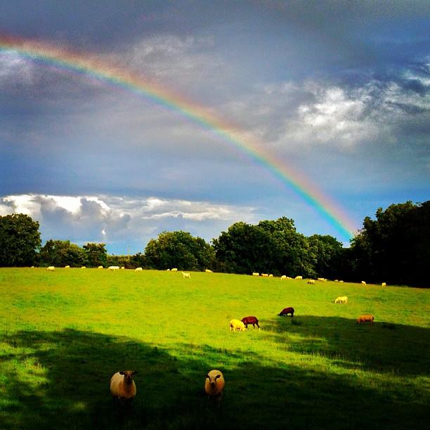 20120729 Ballygowan rainbow