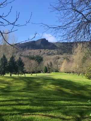 MrUlster 20170320 TheLinenHall 120335 Cavehill