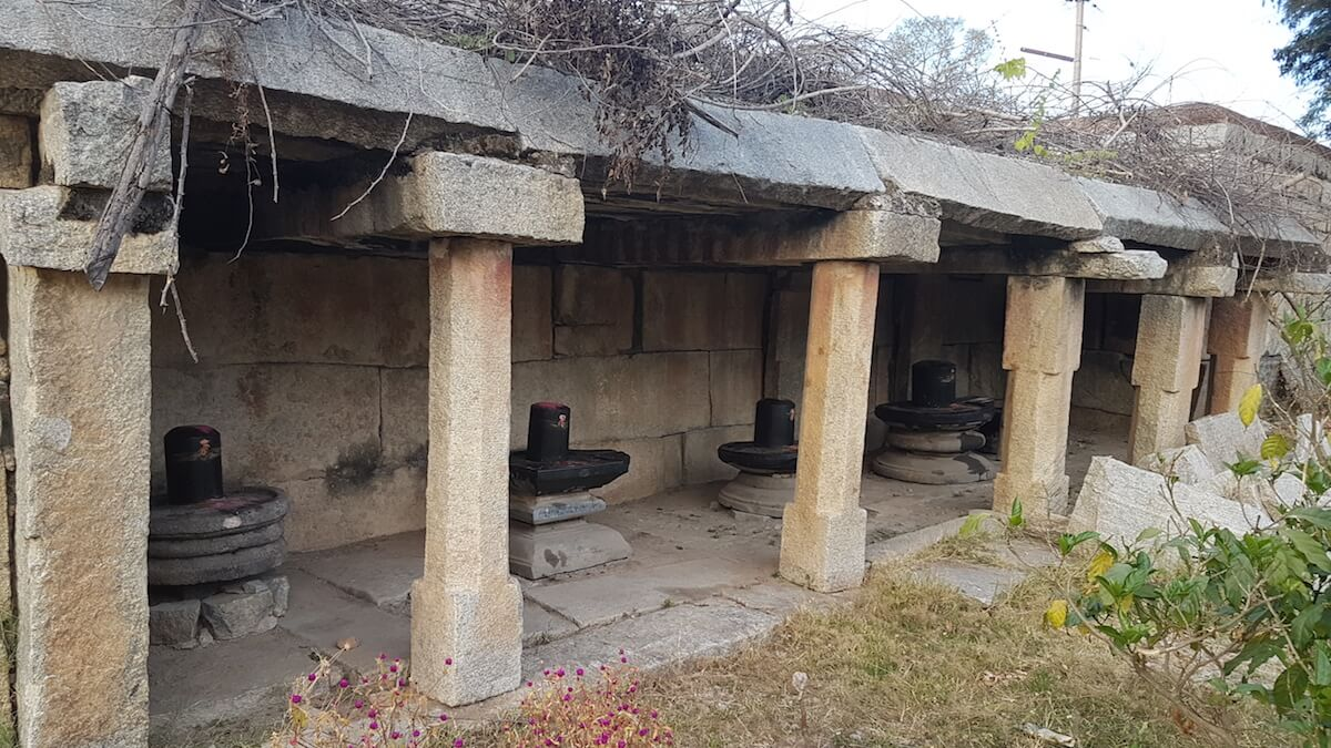 The multiple Shiva lingas