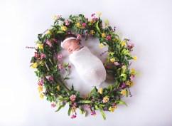 Newborn-Photograper-Jonesboro-Arkansas-Melanie-Runsick-Photography