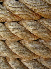 0411260823541rope_textures