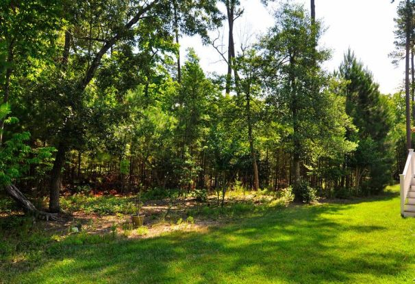 backyard view in brandon woods